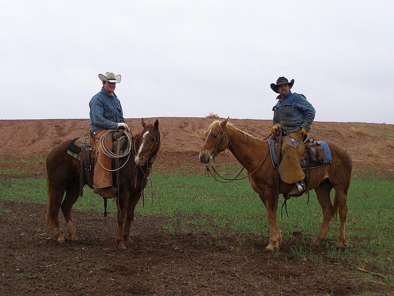 800px-texascowboys2